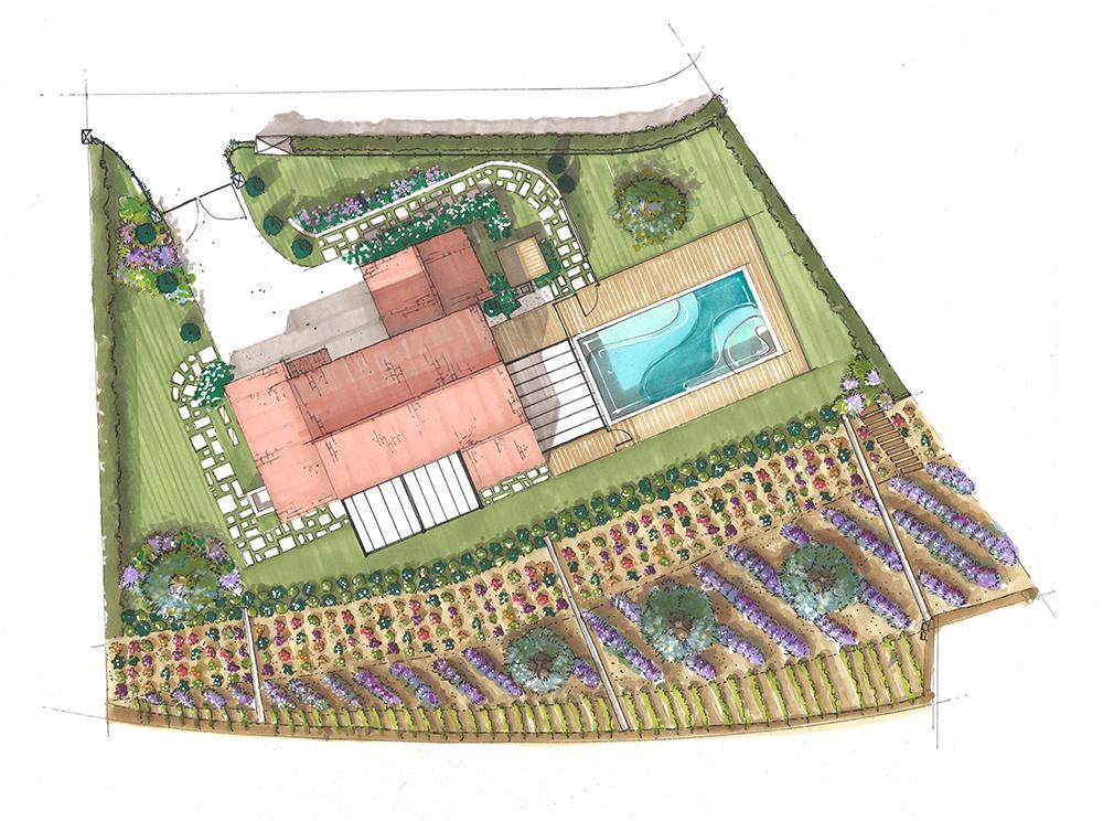 dessin-projet-paysagisme-piscine