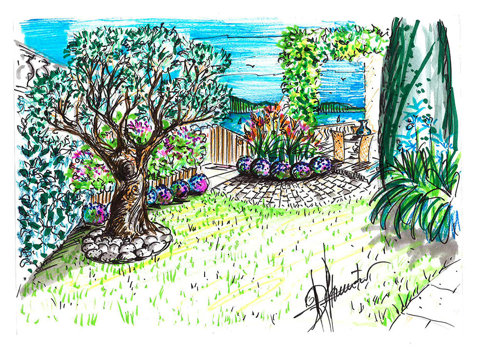 projet-architecture-paysagisme-jardin-dessin